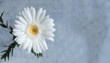 Ahlak Nasıl Güzelleştirilir?