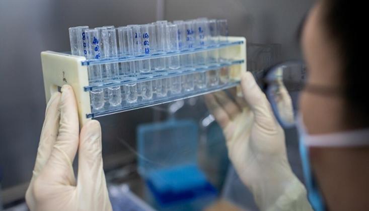 Koronavirüsün Tehlikeli Mutasyonuna Rastlandı
