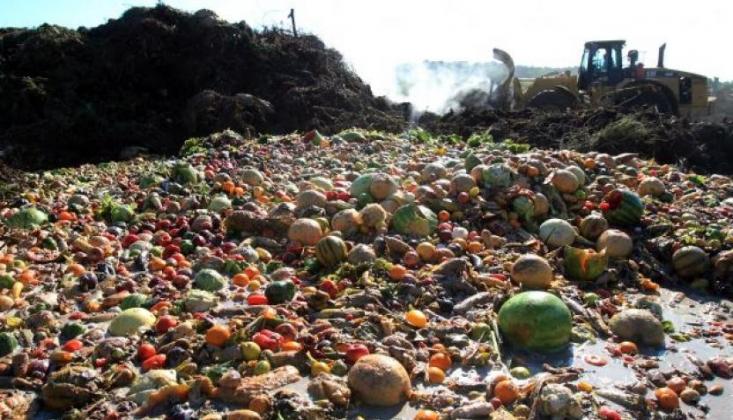 30 Milyondan Fazla İnsana Hayat Boyu Yetecek Gıda Çöpe Gidiyor
