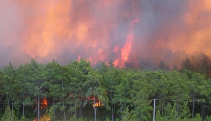 Yangından Etkilenen Bölgeler İçin Açıklama