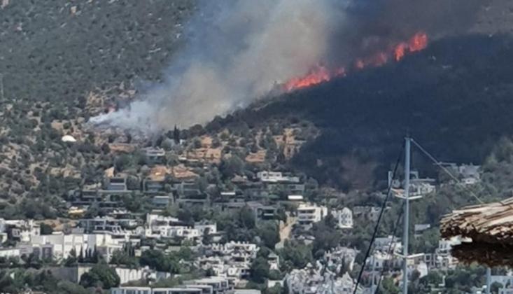 Bodrum'da Birden Çok Noktada Yangın