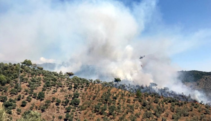 Milas Belediye Başkanı: Yangın Bitmiyor! Sürekli Bir Yerden Tekrarlıyor
