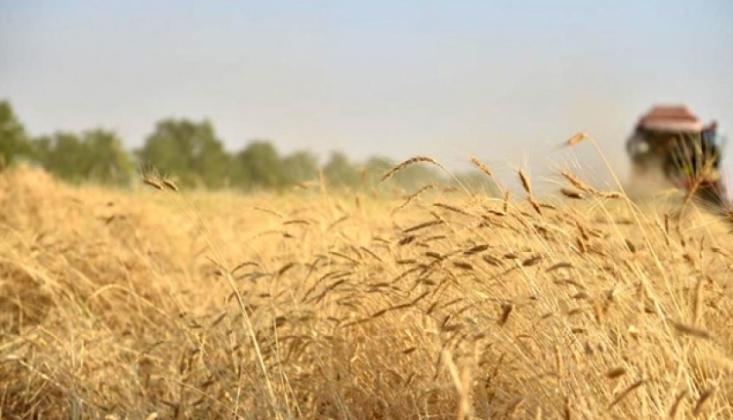 Çiftçilere Yeni Bir Umut!