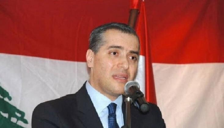 Mustafa Edib'in Kabine Kurma Başarısızlığı, Sebepler Ve Sonuçlar
