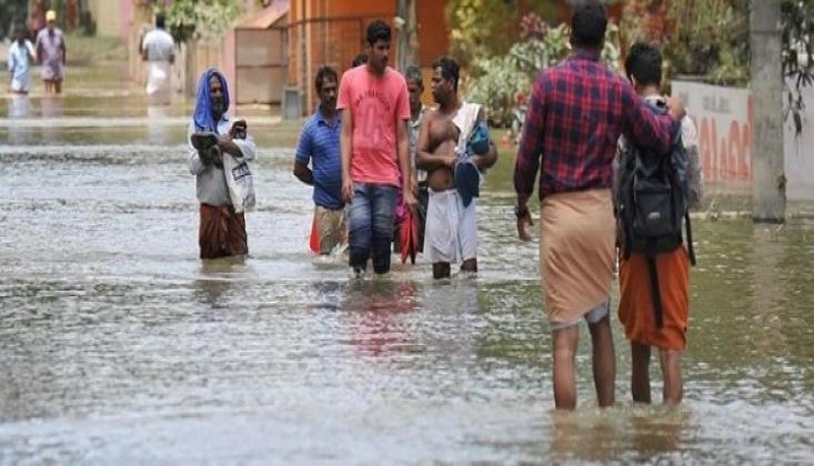 Hindistan'da Selin Bilançosu Artıyor