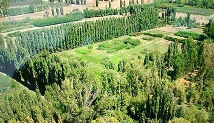 Atatürk Orman Çiftliğindeki ABD Elçiliği İnşaatı Durabilir