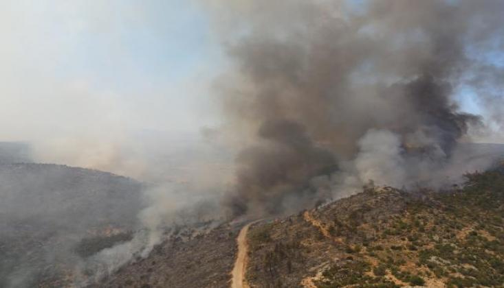 Türkiye'de 8 İlde 16 İlçede Orman Yangını