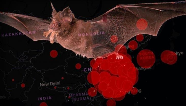 DSÖ, Coronanın Detaylarını Öğrenmek İçin Çin'e Gidiyor