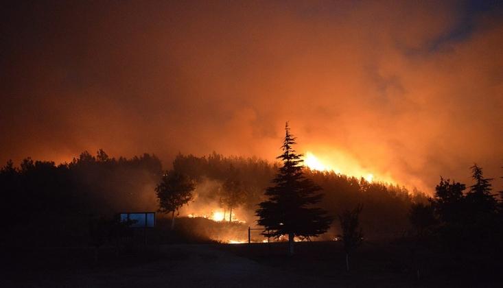 İlk Ders Orman Yangınları