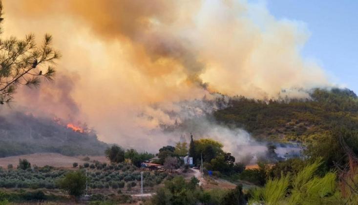 Osmaniye ve Kayseri'deki Yangınlarda Kasıt Var Mı?
