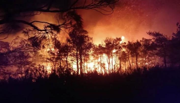 Hatay'da 4 Ayrı Noktada Yangın