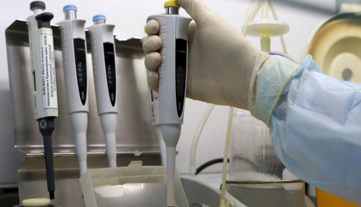 İngiltere'de 7 Bin 132 Kişiye Koronavirüs Testi Yapıldı