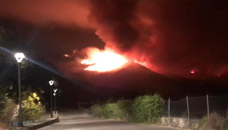 İspanya'da Orman Yangınları; 6 Bin Hektar Alan Kül Oldu