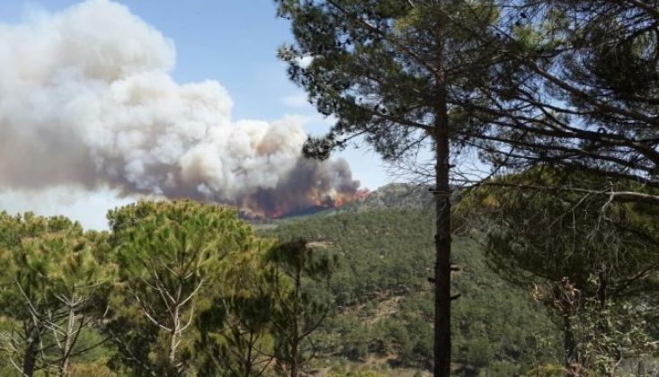 Aydın ve Muğla'da Orman Yangını