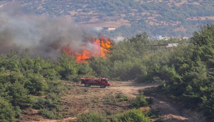 Orman Yangınları İle İlgili Tutuklama Kararı