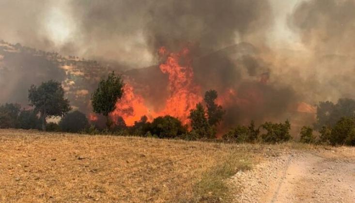 Muğla'daki Yangında Bir Kişi Daha Hayatını Kaybetti