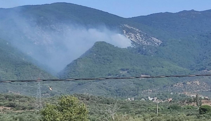 Kazdağları'nda Orman Yangını Çıktı