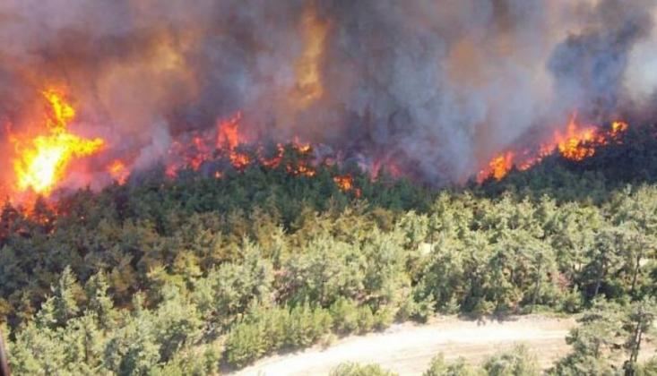 Gelibolu Yarımadası'nda Orman Yangını: Boğaz Trafiğe Kapatıldı