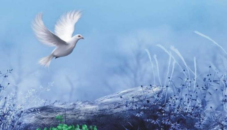 Paha Biçilmez Servet: Özgürlük