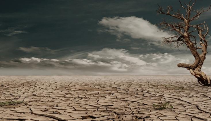 BM'den Çağrı; Dünya Büyük Bir İklim Kriziyle Karşı Karşıya
