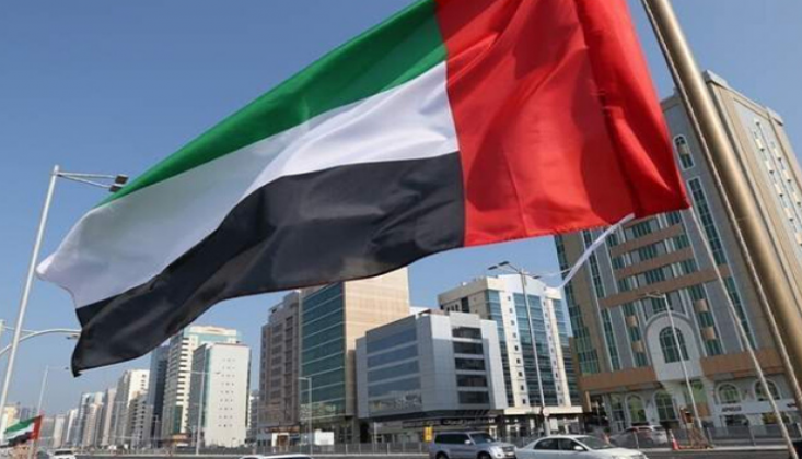 BAE'den Türkiye'ye 'Libya' Uyarısı
