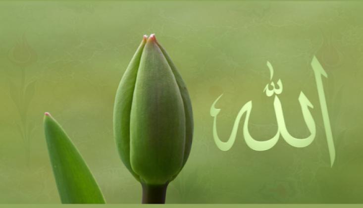 Tevhid - Allah Teala'nın Varlığı